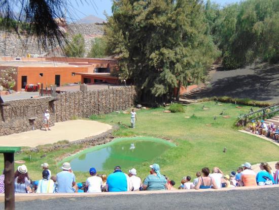 Wigwam - Picture of Rancho Texas Lanzarote Park, Puerto Del Carmen - TripAdvisor