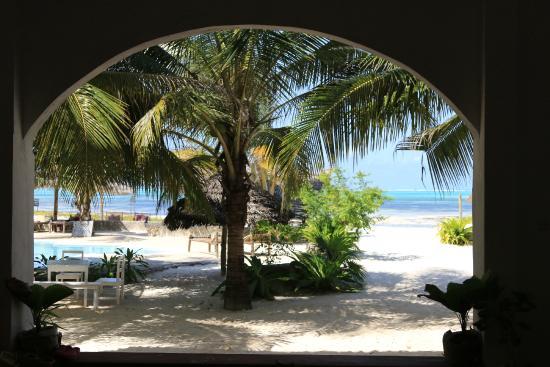 Photo of Kilima Kidogo Guesthouse Paje