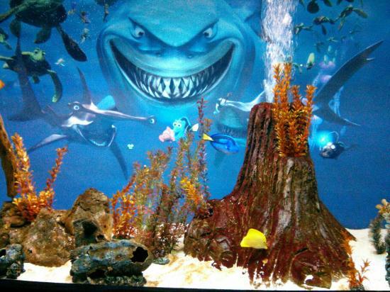 Sea World Aquarium Picture Of Ushaka Sea World Aquarium