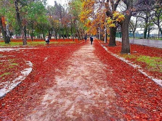 Avellaneda, Argentína: Parque de los Derechos del Trabajador