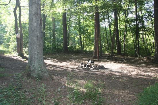 Hedgesville, Virginia Occidental: Campground site