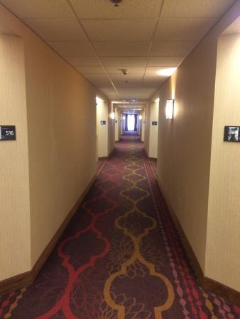 Hampton Inn Altoona : photo0.jpg