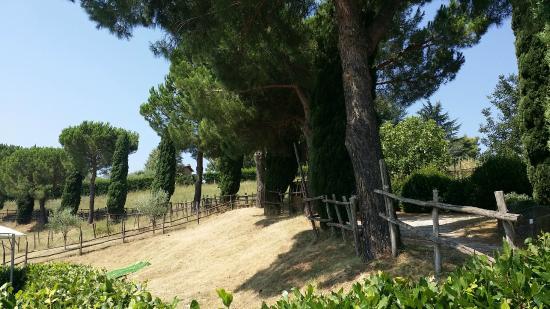 Agriturismo Valle Siriaca : passeggiata