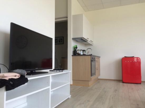 Kopavogur, Islandia: Living room
