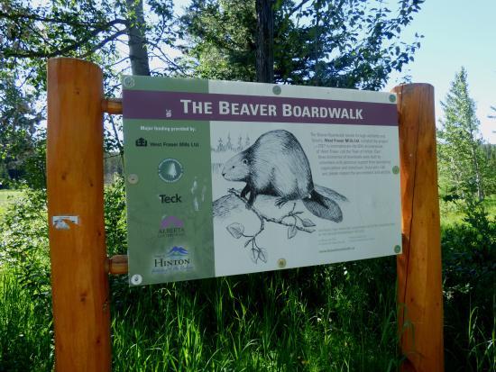 The Beaver Boardwalk: Signage