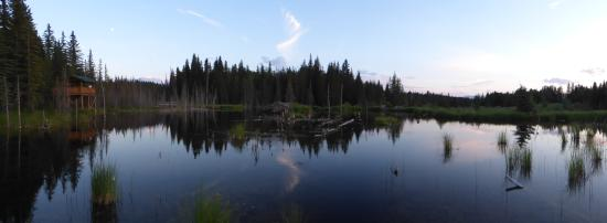 The Beaver Boardwalk: Pano of the area