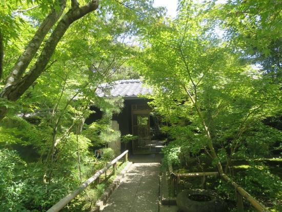 Matsuyma Garden Art Museum