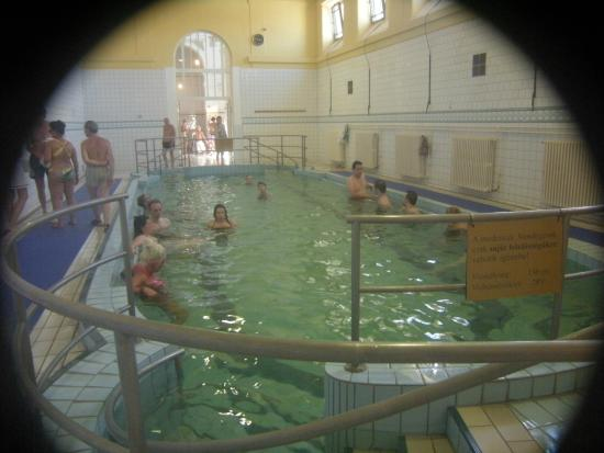 Szechenyi picture of szechenyi baths and pool budapest - Hornchurch swimming pool opening times ...