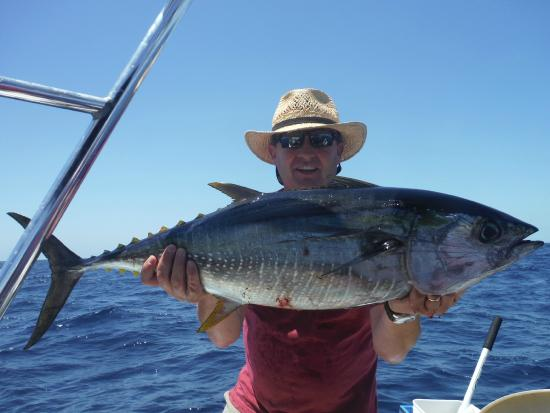 San Clemente, CA: Tuna