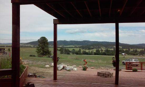 Sawin' Logs: Looking out over the property.