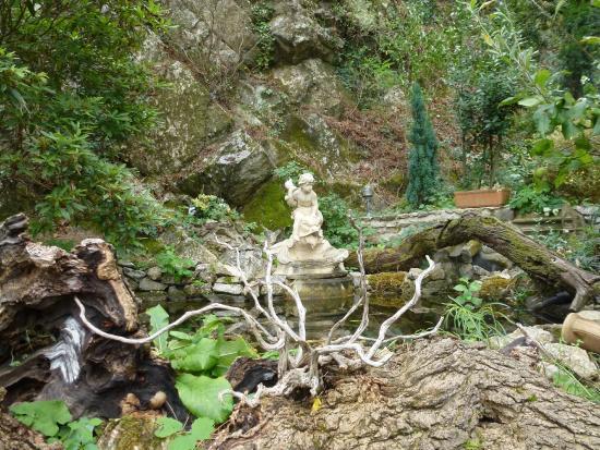 Dans un d tour picture of le jardin d 39 eden tournon sur for Le jardin d eden