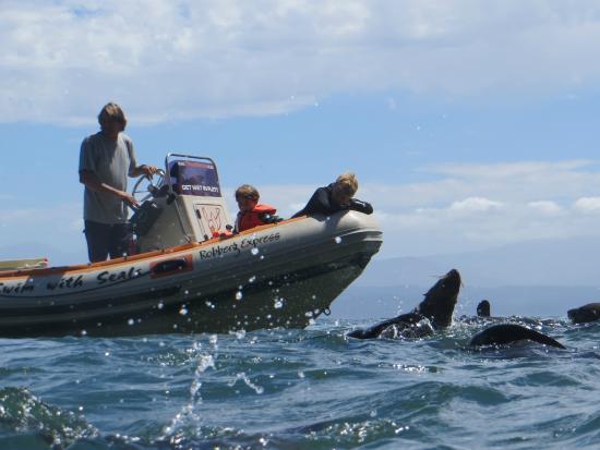 Offshore Adventures