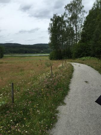 Arvika, Suecia: Bergs klatt Nature Reserve
