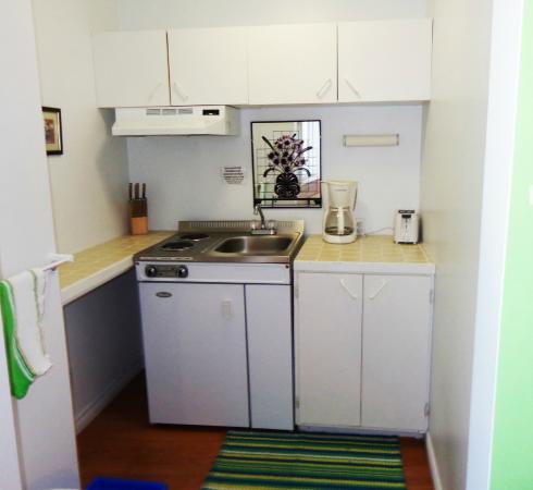 Motel des Deux Lacs Inc. : cuisinette studio #8
