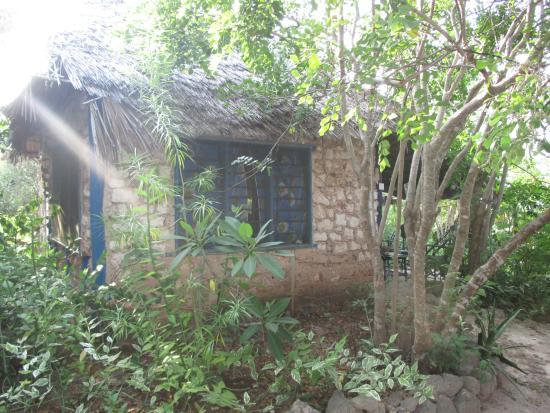 Wasini Island, Kenya: один из домиков для гостей в лучах заходящего солнца