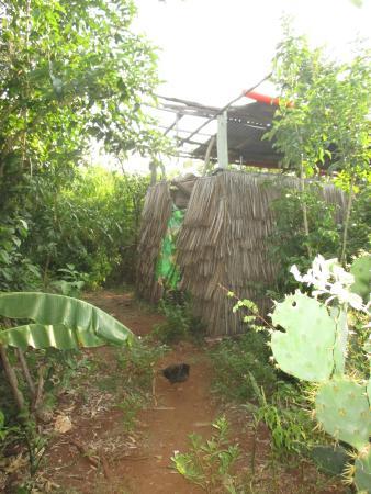 Wasini Island, Kenya: котедж в стиле кантри