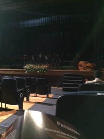 Teatro Municipal Jose de Castro Mendes: Palco e cadeiras