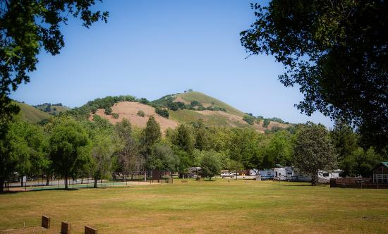 Morgan Hill Rv Resort Updated 2019 Prices Campground Reviews Ca