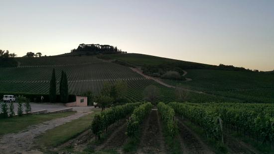 Landscape - Foresteria Villa Cerna: -