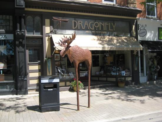Orangeville, Canada: Dragonfly Arts on Broadway