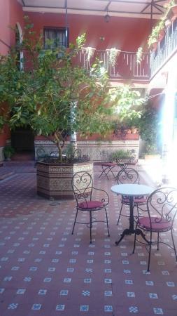 Al Andalus Jerez: patio