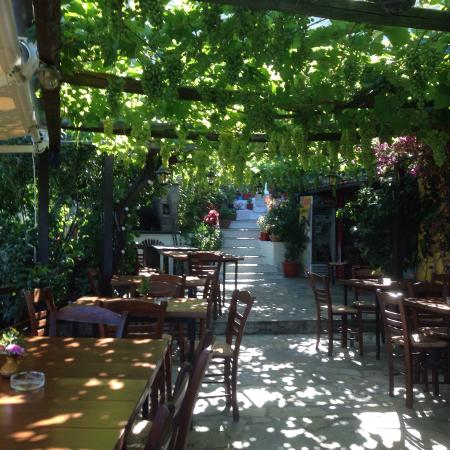 Platanidia, Grekland: Ταβέρνα ΕΛΕΝΗ παράδεισος φαγητού