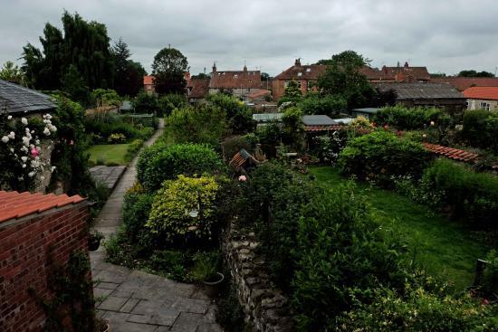 Eden House B&B - View of Garden from Bedroom 1 is great. Relaxing to watch the various wild bird