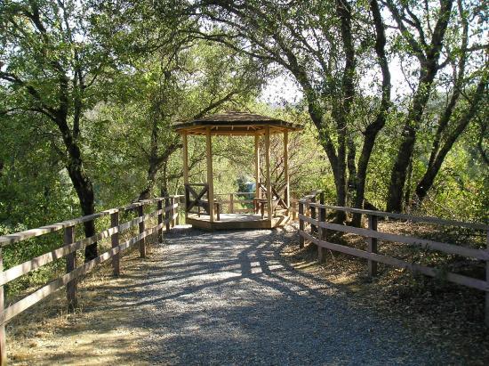 Ponderosa rv resort updated 2017 campground reviews for Ponderosa cabins california