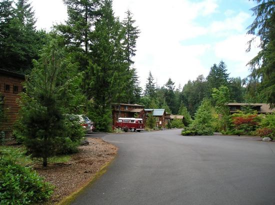 Mt Hood Village RV Resort: Rental units