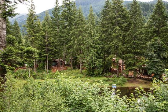 Mt Hood Village RV Resort: Lakefront rental units