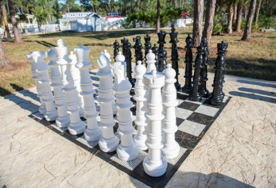 Hookup Advice Places To Play Chess In South Florida