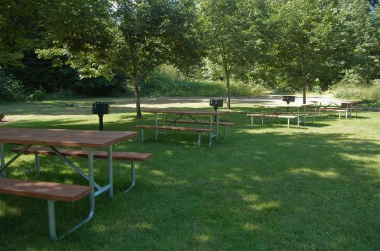 Mt Hood Village RV Resort: Picnic/BBQ Area