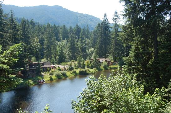Mt Hood Village RV Resort: Camp views