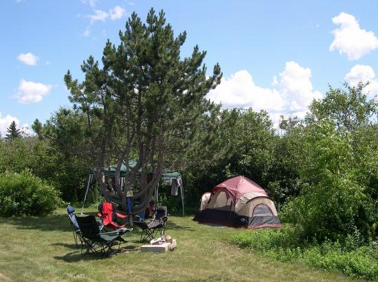Narrows Too Camping Resort: Spacious camp areas