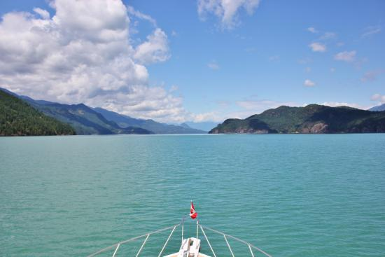 Shoreline Tours and Charters: View up Harrison Lake.