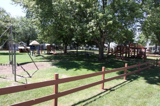 West Salem, WI: Campground area