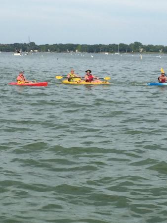 Kayak the Bay : photo0.jpg