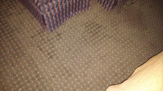 Quality Inn Havelock: More stains on the carpet