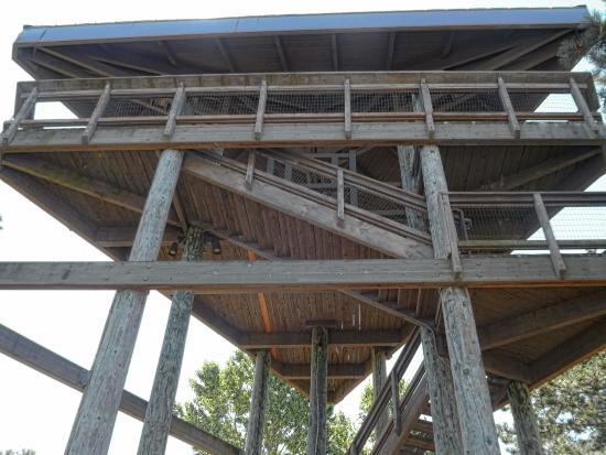 แวนคูเวอร์, วอชิงตัน: no elevators, just stairs