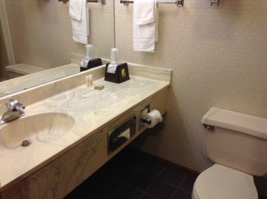 Super 8 by Wyndham Shipshewana : Basin and toilet