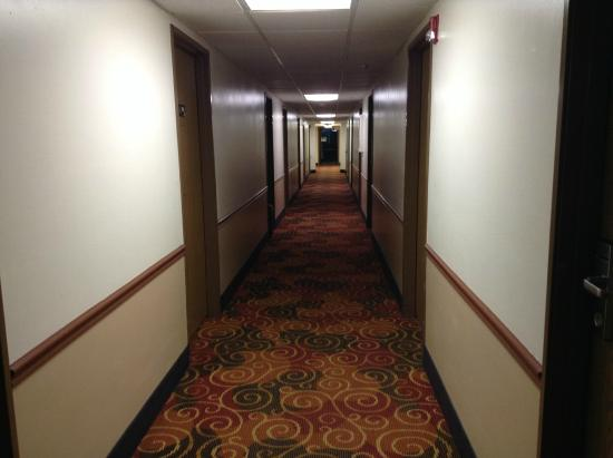 Super 8 by Wyndham Shipshewana : Corridor to the rooms/suites