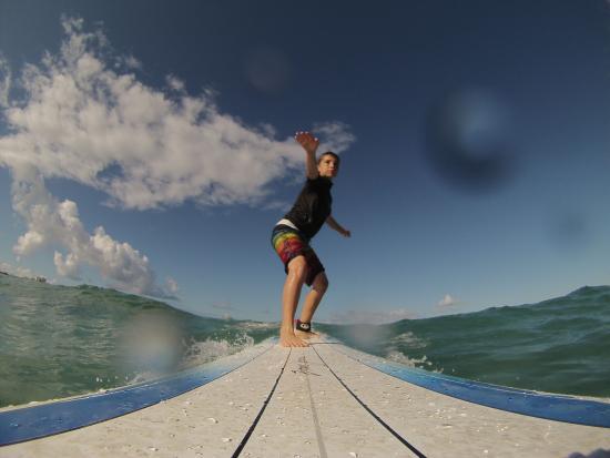 Moku Surf shop: Up like a boss!!