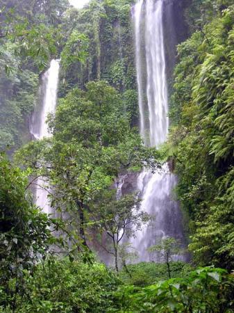 Fantastic Bali Tours