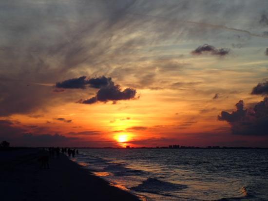 Pelicans Roost : Sunrise