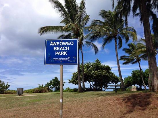 Waialua, HI: ビーチ看板