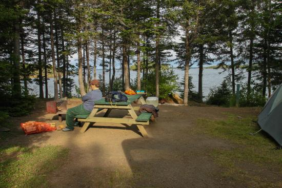 Newfoundland, Καναδάς: Campsite at Dildo Run