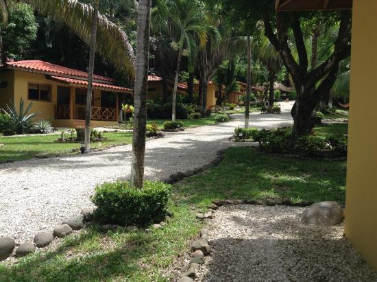 Esencia Hotel & Villas: Caminito hacia las villas