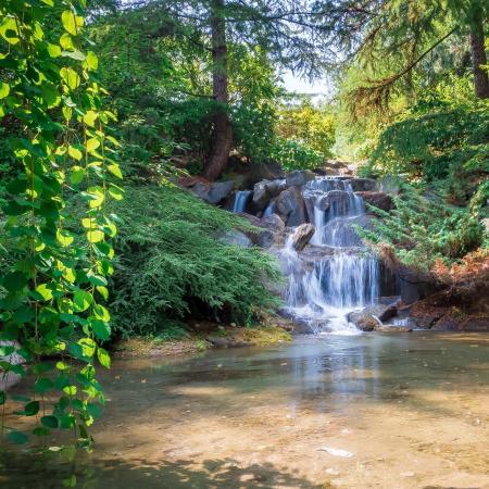 VanDusen Botanical Garden: Waterfall In Van Dusen Park
