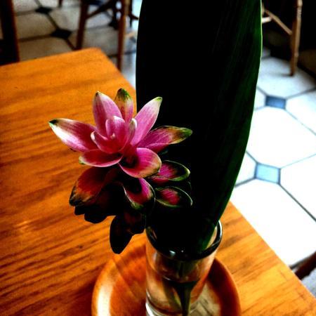 テーブルのお花もブラジルっぽい