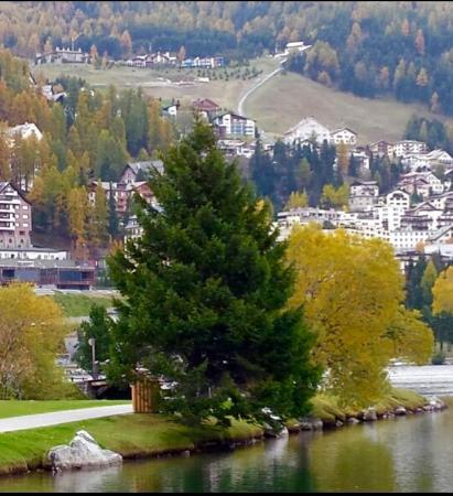 Hotel Schweizerhof: Vista